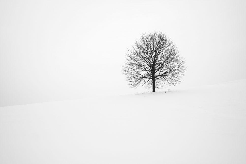 long dark winter | kourtney thomas life coach